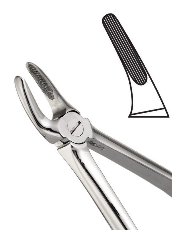 歯科用抽出鉗子図30上部根